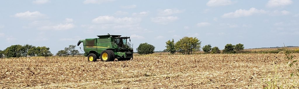 Fields, Ready to Harvest